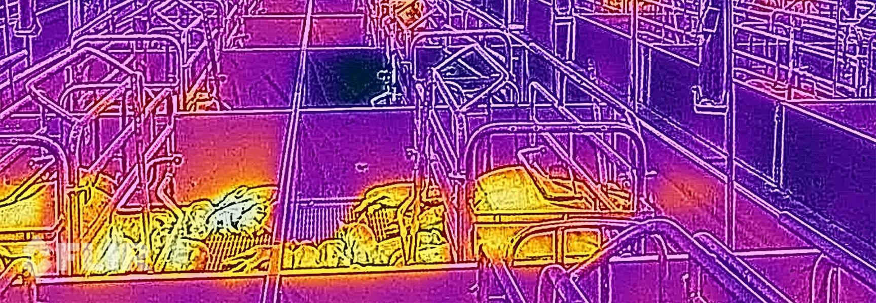 Cat S60 thermal imaging in pig farming   Cat phones